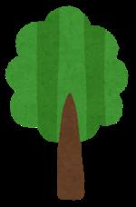 【産後すぐ~1歳】応募して大満足☆赤ちゃんの誕生記念植樹を無料で!ピジョンが行うキャンペーンがすごい!