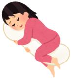 【妊娠期】可愛くて、柔らかい安眠のお供。抱き枕「プレミアムねむねむアニマルズ」
