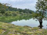 【0~1歳】秋におすすめのハイキングコース♪湖北、余呉湖を一周してきました。